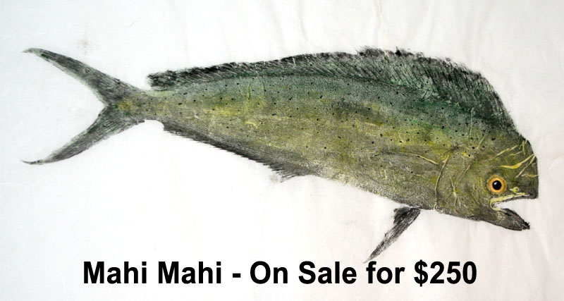 Original art gyotaku fish prints - Mahi Mahi Gyotaku Art
