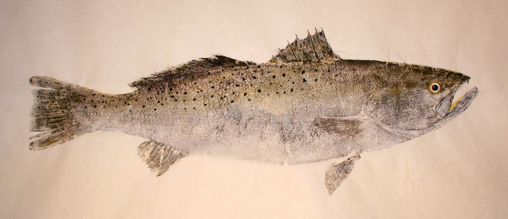 Original art gyotaku fish prints - Speckled Trout Gyotaku Art